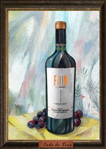Fin del Mundo Single Vineyard Cabernet Franc 2009, Bodega Del Fin del Mundo
