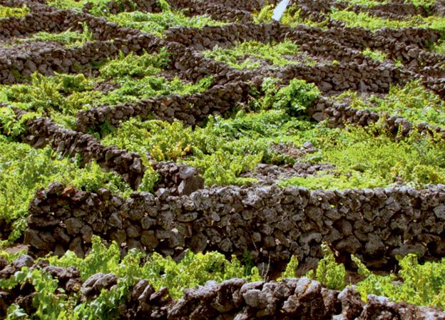 Курралеташ (curraletas) - резервуары, высеченные из вулканической породы на Азорских островах