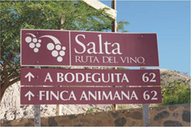 Ruta 68, or the Wine Mystery of Argentina