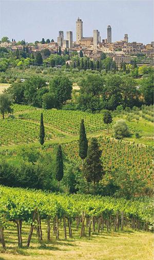 Типичный тосканский пейзаж