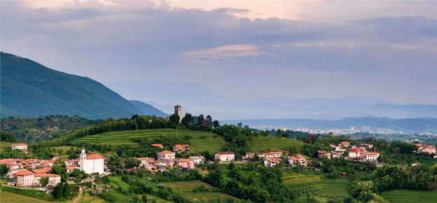 The wines of the Gorizia hills